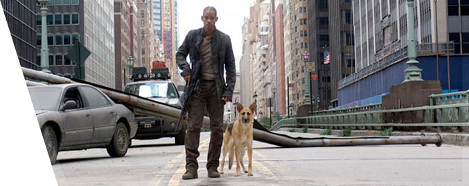 Will Smith I Am Legend Body | www.imgkid.com - The Image ...